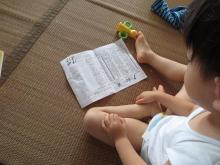 絵本を幼児に読み聞かせるブログ-おみやげ