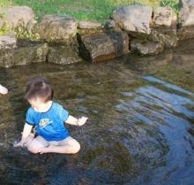絵本を幼児に読み聞かせるブログ-100912-3
